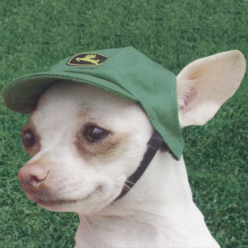 John Deere dog hat