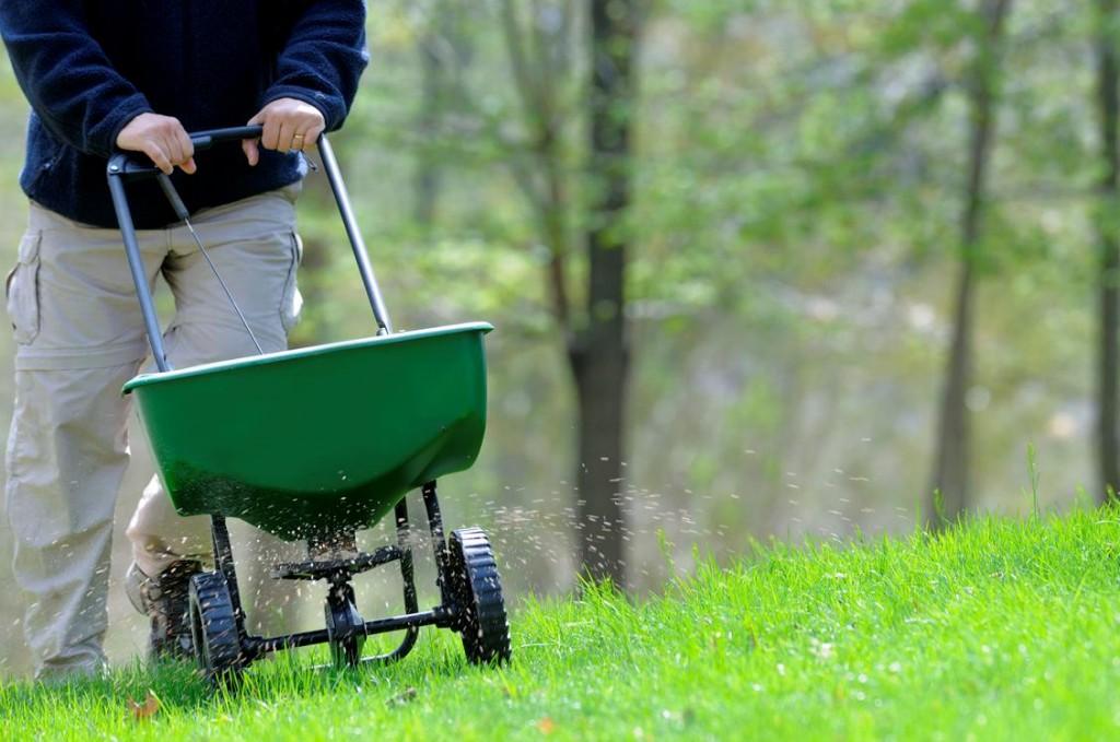 lawn care tips - fertilizing the lawn