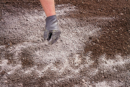lawn care tips - liming the soil