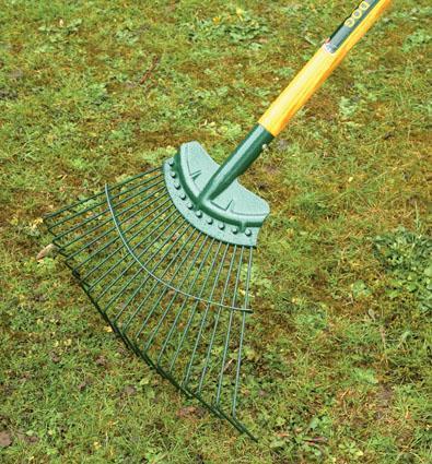 lawn care tips - raking