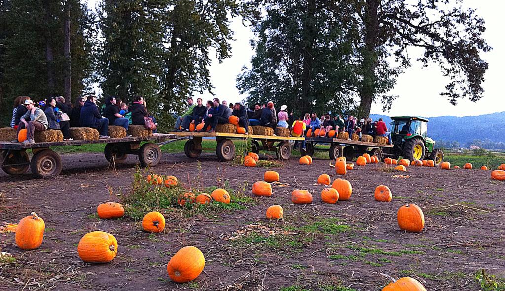 Pumpkin Hayride