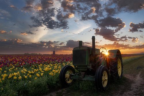 John Deere Tractor Photo on the Farm