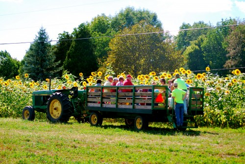 Hayride photo with John Deere tractors