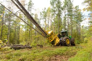 The John Deere FD55 Disc Saw Felling Head allows increased production
