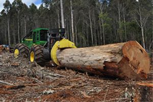 John Deere Forestry adds new wheel weight package
