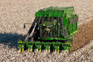 Georgia Cotton Commission awaiting decision from cotton growers