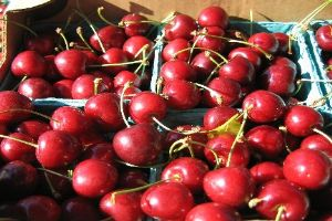 Michigan is the largest producer of tart cherries in the country; a key aspect of Michigan agriculture