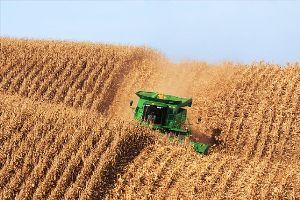 U.S. Corn acreage is expected to increase slightly in 2013, representing highest acreage total since 1936