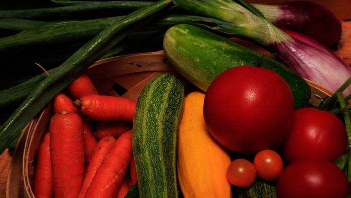 growing vegetables based on seasonal changes
