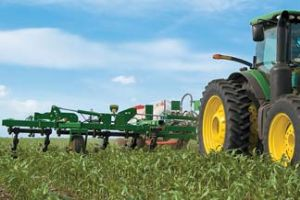 The planting of cover crops in Iowa's unplanted fields could benefit farmers in 2014