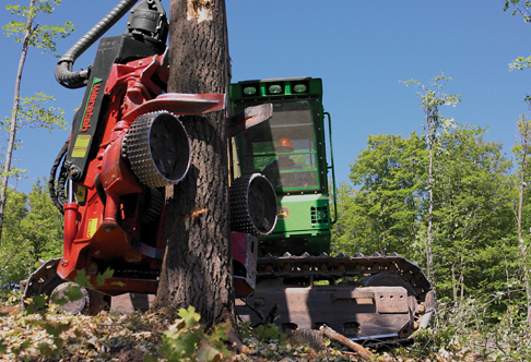 John Deere Tracked Forestry Harvester with Tree