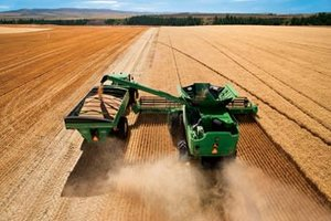 Safety experts are urging grain harvesters to use caution when storing this year's crops which contain above average moisture levels