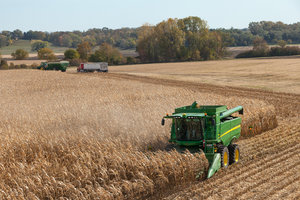 The United States accounts for nearly 40 percent of the world's annual corn exports.
