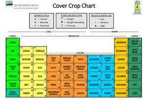The Cover Crop Chart (v. 2.0) is designed to assist producers with decisions on the use of cover crops in crop and forage production systems.