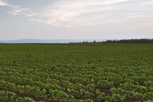 The Illinois Department of Agriculture's upcoming seminars will help farmers better understand how soil and water conservation best practices can improve their operation.