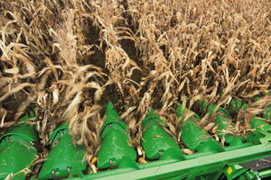 Corn and corn products remain as critical components of the United States economy.