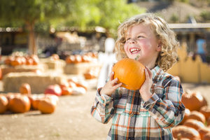 The John Deere Fall Festival's list of activities will make for a fun family event.