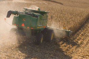 High winds can down corn and leave it difficult to harvest. The University of Nebraska outlines tips to assist producers.