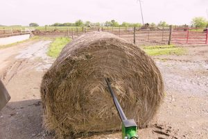 Hay storage is essential to producers who are looking to not only reduce waste but also boost their overall bottom line.