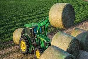 Regardless of when producers harvest, the experts recommend cutting high, leaving between eight and 10 inches of stubble.