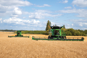 The report's authors determined that the use of extended rotations – specifically those that utilize small gains and forages – can have a positive agronomic and environmental impact.